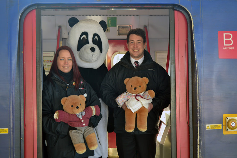 teddies-on-train