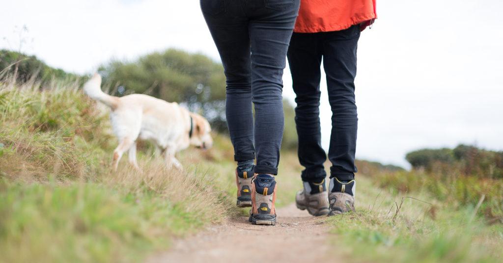 dog-walking-FB-dimensions