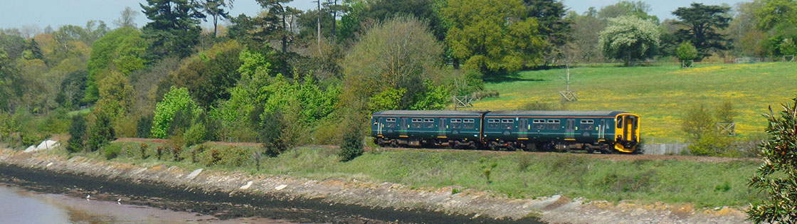 Train on the Avocet Line - photo by Mark Lynam